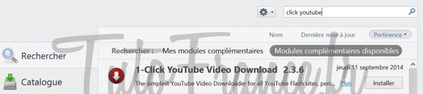 Comment télécharger une vidéo YouTube en MP4, WEBM, FLV ou 3GP (2)