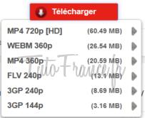 Comment télécharger une vidéo YouTube en MP4, WEBM, FLV ou 3GP (5)