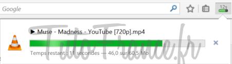 Comment télécharger une vidéo YouTube en MP4, WEBM, FLV ou 3GP (6)